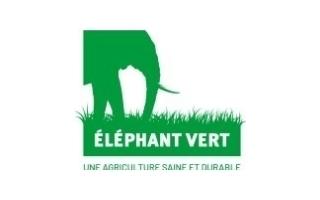 Eléphant Vert