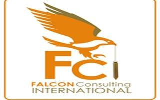 Falcon Consulting International